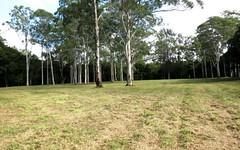 25 Bo Bo Creek Road, Burrell Creek NSW
