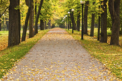 Autumn park Kadriorg, Tallinn