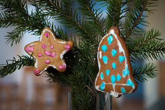 Decoration (Ilia A) Tags: christmas tree star cookie day bell decoration installation inside 2470mm canon70d