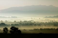 Nebbiolina mattutina (luporosso) Tags: italy naturaleza mist nature fog landscape landscapes nikon italia natura nebbia paesaggi paesaggio lazio foschia naturalmente abigfave luporosso nikond300s