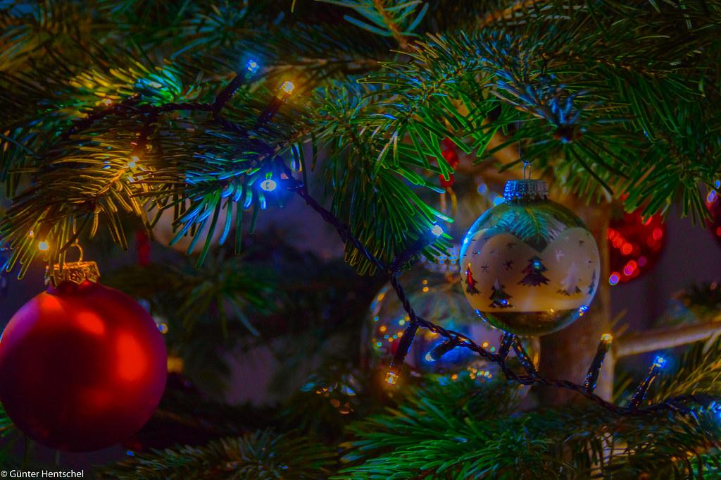 Weihnachtsbilder Elch.The World S Newest Photos Of Grün And Tannenbaum Flickr Hive Mind