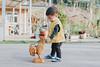 Yestin (Randy Wei) Tags: mitakon zhongyi speedmaster people sunlight outdoors chicken countryside woods farm animal sun winter kids children