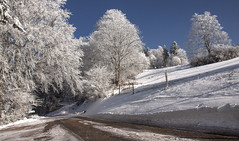 Un matin d'hiver (mrieffly) Tags: vosgesalsace htrhin geishouse hiver2017 givre neige arbres canoneos50d