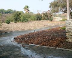 066 Urban Runoff In A Time Of Drought (saschmitz_earthlink_net) Tags: 2016 california kennethhahnpark losangelescounty losangeles baldwinhills park staterecreationarea hike hiking