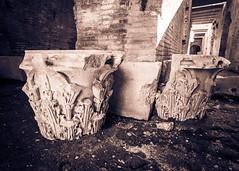 Column Toppers (silverfox_hwz) Tags: campania capua santamariacapuavetere amphitheatre anfiteatro ancientcapua gladiator gladiatormuseum