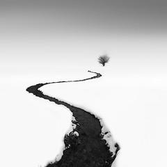 _MG_1579 (ruben redondo...) Tags: nieve rio linea monocromo urbasa arbol