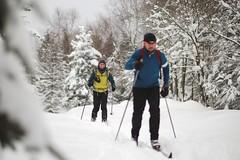 Just Gliding Along (all martn) Tags: schnee snow winter langlauf langlaufen cross country skiing ski hohe tour erzgebirge osterzgebirge krusne hory ore mountains