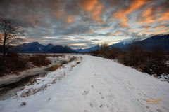Snow Tracks (erwin.delfin_photography) Tags: snow pittlake sunrise clouds snowyvancouver britishcolumbia vancouver beautifulbritishcolumbia