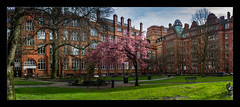 Sackville Park (Alan Turing) (Kevin, Mr Manchester) Tags: britishculture manchester turing enigma park panorama northwest hdr historical history lancashire canon1855mm statue photoborder gardens