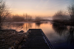 Great morning view (Dannis van der Heiden) Tags: outdoor sky pier estate stoutenburg water ice frozen trees fog mist morning sunrise amersfoort leusden netherlands reflection tamron1750mmf28 slta58 deschammer schammer reserve