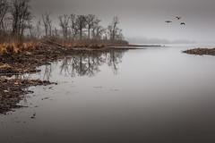 Swartswood South-2.jpg (elektratig) Tags: swartswood lakeswartswood fog stillwater sussexcounty newjersey