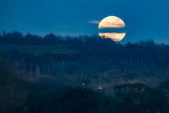 Old Moon Madness (ianbonnell) Tags: billinge billingehill moon