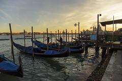 Gondole sul far della sera (Renato Pizzutti) Tags: venezia tramonto gondole carnevale rivadeglischiavoni nikon renatopizzutti