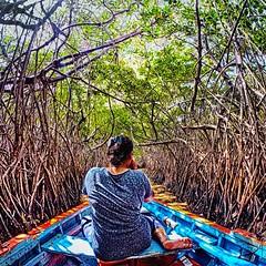 Boating in Pichavaram Mangrove Forest (ramesakky) Tags: pichavaramboating pichavaram boating boat pondicherry pondicherryecr backwater backwaters chennai incredibleindiaindia incredibleindia incrediblechennai travelclick travel travelphotography htcre htc