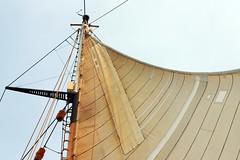 patched main (lawatt) Tags: sea boat main sail tallship patch ssvcorwithcramer sailabstract