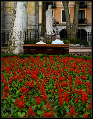 faith (Marooned) Tags: red roses people geotagged rojo faith banco bilbao fe estatua virgen zd 40150mm geolat432636000487 geolon292900453001 etcrojo