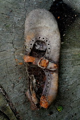 Shoe (ART NAHPRO) Tags: woman art lost shoe sussex nahpro tortoise shell oneyear etchingham plantflaghere