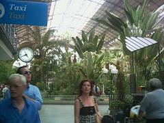 Atocha (la_titi20) Tags: plantas movimiento estacion stress prisa