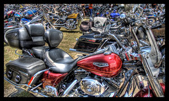 Sea of Harleys
