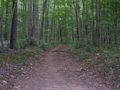 Appalachian trail Sendero de los Apalaches Roanoke Virginia Estados Unidos