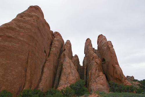 Rock Fins