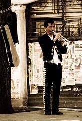 Garibaldi (organiq) Tags: street people color mexico gallo calle mexicocity gente trumpet explore mariachi garibaldi serenata trompeta organik explored