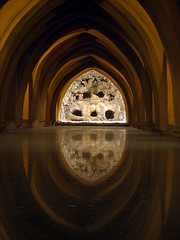 Cavern Pool (icelight) Tags: reflection water underground sevilla spain europe palace seville springbreak