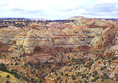 Colourful Landscapes Escalante, Randy's (goobersmyn) Tags: utah capitolreef escalantecanyons boulderutah torreyutah tropicutah grandcircletour overthehogsback grandstaircaseoftheescalante utahsscenicbyways utahscanyons utahsscenichighway12 utahsredrock