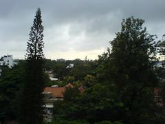 The Greens (code_martial) Tags: sunday morning bengaluru bangalore w800i