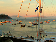 Cocktail Hour at Bar Harbor (zrim) Tags: fog maine yachts sailboats barharbor mireasrealm 5hits