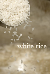 white rice (kit) Tags: food white rice grain cook measure pour arroz starch kitsweeney