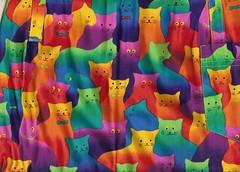 y más gatos...