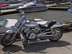 A Harley @ Islendingadagurinn (Paul Linton) Tags: canada boats winnipeg manitoba harley chrome harleydavidson motorcycle gimli icelandicfestival mantioba islendingadagurinn icelandicfestivalofmanitoba