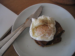 A perfect poached egg on barley wheat toast.