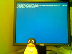 Blue Screen (bettlebrox) Tags: blue windows penguin bigeyes debian 2006 screen stop dell linux bluescreen tux winxp