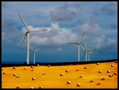 Wind Turbines (mliebenberg) Tags: uk cornwall wind bales stives balle windturbines explore1 abigfave 30faves30comments300views