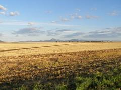 The Road to Narrabri