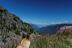 Que la montagne est belle..... (perlmic) Tags: valais montagnes emosson