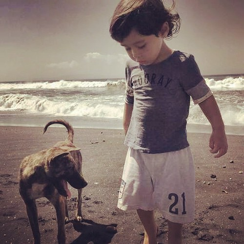 A #boy, a #dog, and the #beach. Thats a #goodday in my book. #instalove #kids #dreams #tropicalliving #Bali #Indonesia #Childhood #GoodBoy #LoveLife #Ocean #BFF #friends #BestFriends #Companion #Loyal #Love #instasun #beautifulday #sunandfun #nature #phot