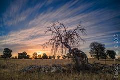 Daimiel (Carlos J. Teruel) Tags: cloud sunrise nikon amanecer le cielo nubes ciudadreal inverso 1835 filtros gnd daimiel nikon1835 xaviersam carlosjteruel d800e nikonafsnikkor1835mmf3545ged