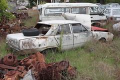 Chrysler Valiant VF Regal (jeremyg3030) Tags: cars abandoned yard valiant chrysler regal vf wrecking wreckers cooma flynns