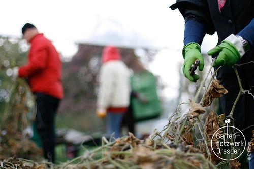 kompostieren_29
