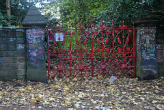 Photo of Strawberry Field forever...