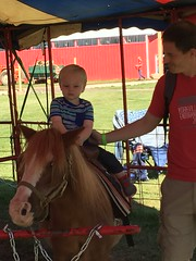"""Paul Rides a Pony with Daddy • <a style=""""font-size:0.8em;"""" href=""""http://www.flickr.com/photos/109120354@N07/22856818829/"""" target=""""_blank"""">View on Flickr</a>"""