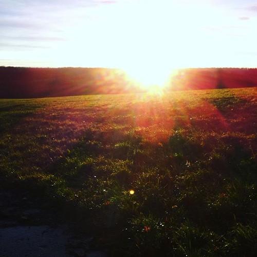Sonnenaufgang über dem Kerstlingeröderfeld für @anna_eule...