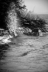 First winter storm (julius.wiesemann) Tags: sea white storm black beach water grafitti wave kiel