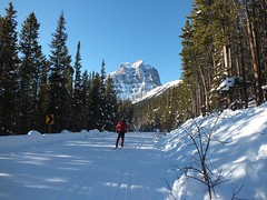 Moraine Lake Road Cross Country Ski - Larry bolts for the finish (benlarhome) Tags: winter snow canada ice rockies nationalpark path crosscountry trail alberta rockymountain banff lakelouise moraine kanada morainelake crosscountryski schi