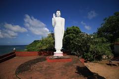 AJY_2975 (arika.otomamay) Tags: srilanka trincomalee gokana gokanna