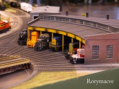 Roundhouse Roundup! (Rorymacve Part II) Tags: train track branch diesel engine rail railway trains class emu locomotive express passenger railways freight nec steamlocomotive shunter mainline dmu diesellocomotive electriclocomotive warley multipleunit modelrailwayexhibition nationalexhibitioncentre warleyexhibition