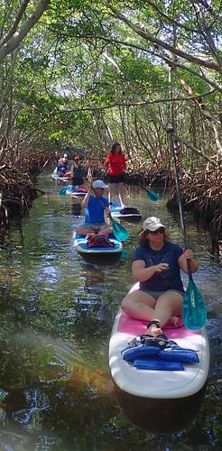 11_29_15 Private Paddle Tour Lido Key FL 01